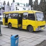 В Луцке открыли новый автобусный маршрут № 33
