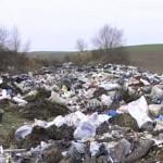 Пять полигонов мусора в области перегружены