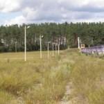 Освещены главные дороги сел Буцинь и Копачевка