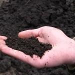 ГП «Волыньторф» получит дополнительную землю под разработку торфяников