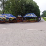 В Центральном парке Луцка будет 4 новые аттракционы и чистота